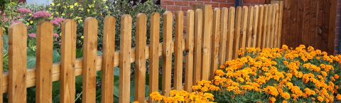 Fencing in and around the Surrey area