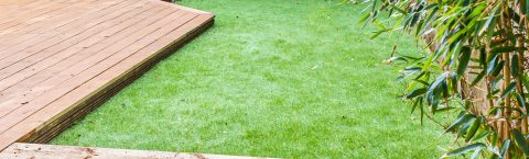 Grass and Turfing Surfaces in and around the Surrey area